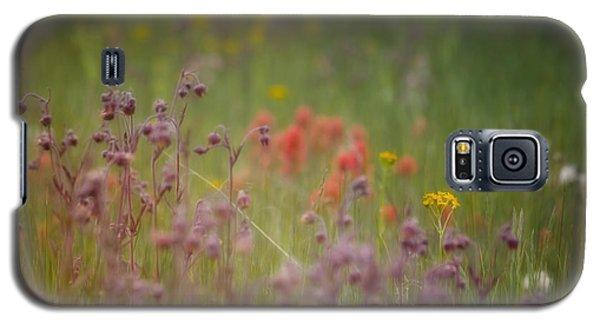 Galaxy S5 Case featuring the photograph Summer Meadow by Ellen Heaverlo