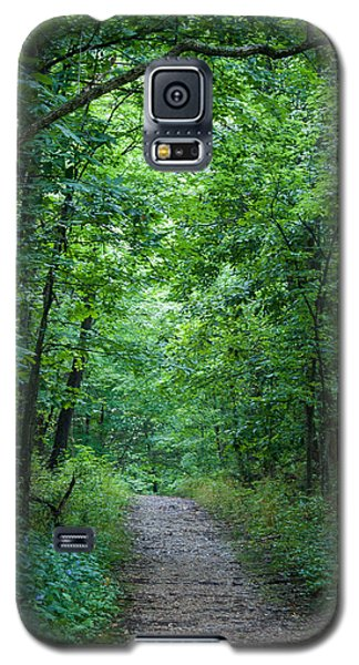 Galaxy S5 Case featuring the photograph Summer Path by Wayne Meyer