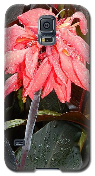 Galaxy S5 Case featuring the photograph Summer Rain In Maryland by Emmy Marie Vickers