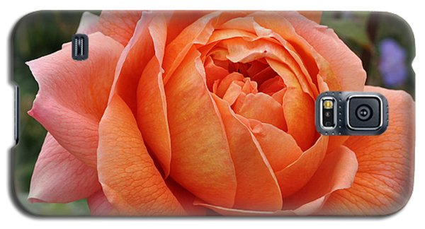Galaxy S5 Case featuring the photograph Summer Song by Sabine Edrissi
