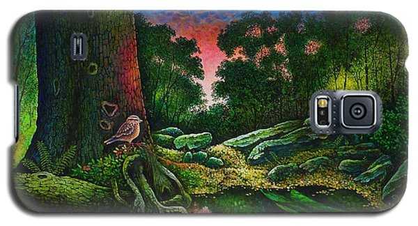 Summer Twilight In The Forest Galaxy S5 Case