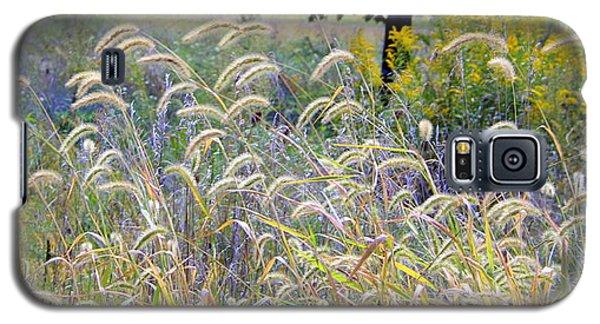 Summer Wheat Galaxy S5 Case