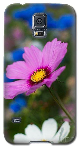 Galaxy S5 Case featuring the photograph Summer Wild Blooms by Matt Malloy