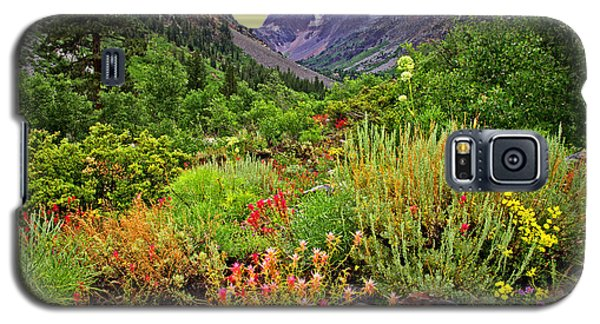 Summer Wildflowers In Lundy Canyon Galaxy S5 Case