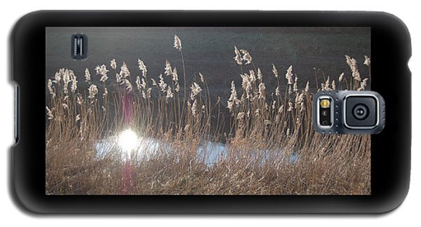 Galaxy S5 Case featuring the photograph Summerlands Setting Sun by Linda Prewer