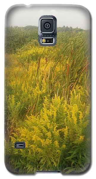 Summer's Finale Galaxy S5 Case by Teresa Schomig