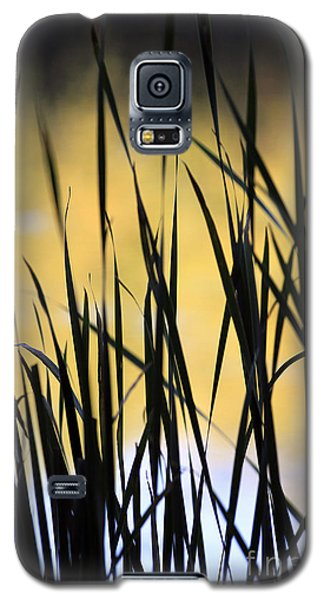 Galaxy S5 Case featuring the photograph Summer's Goodbye by Kate Purdy
