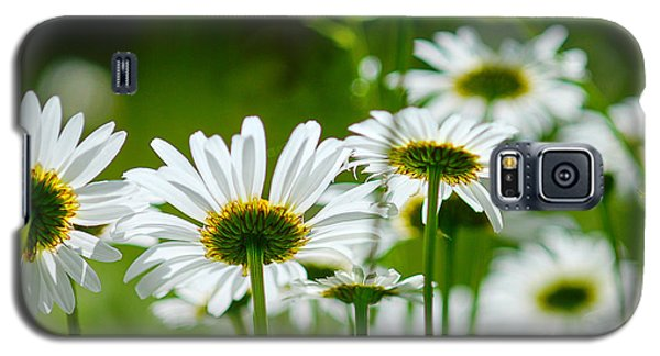 Summer Time Daisys Galaxy S5 Case