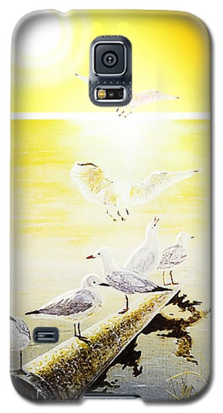 Sun Birds Galaxy S5 Case