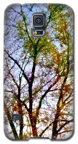 Sun Dappled Galaxy S5 Case