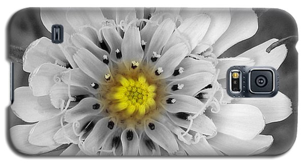 Galaxy S5 Case featuring the photograph Sun Drop by Janice Westerberg