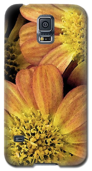 Galaxy S5 Case featuring the photograph Sun Fans by Jean OKeeffe Macro Abundance Art