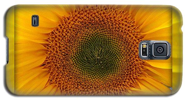 Sun Flower Dream Galaxy S5 Case