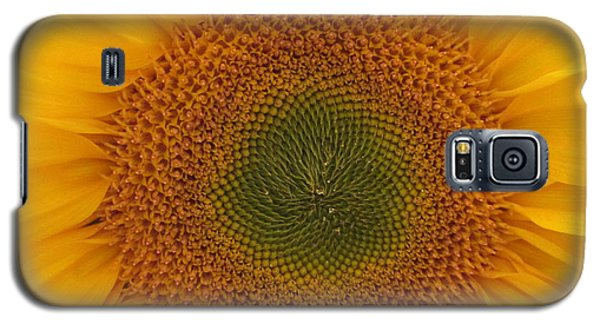 Sun Flower Dream - No Border Galaxy S5 Case