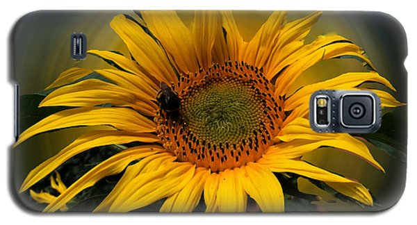 Sun Flower Summer 2014 Galaxy S5 Case