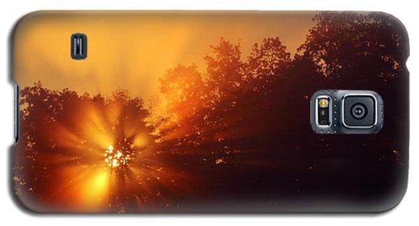 Sun Fog Trees-1 Galaxy S5 Case