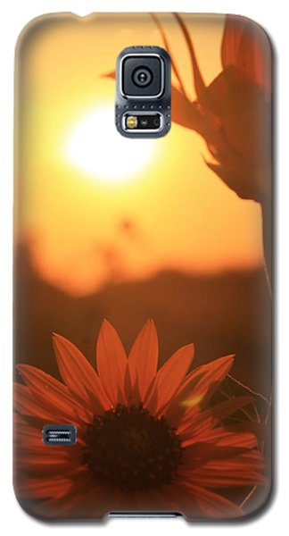 Galaxy S5 Case featuring the photograph Sun Glow by Alicia Knust