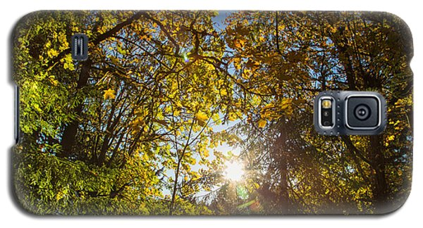 Sun Greets The Trees Galaxy S5 Case