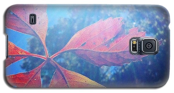 Sun Leaf Galaxy S5 Case