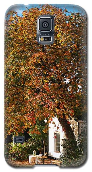 Sun Leaves Galaxy S5 Case