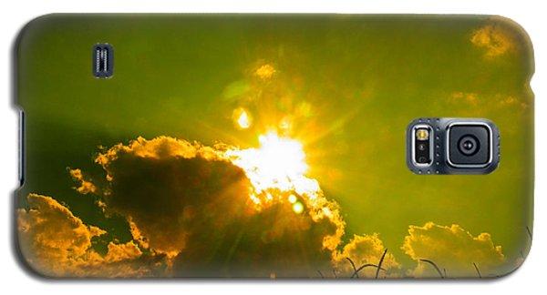 Sun Nest Galaxy S5 Case by Nick Kirby