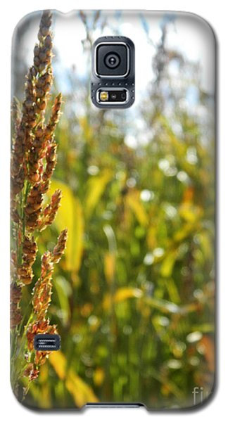 Sun Of Life Galaxy S5 Case by Andrea Anderegg