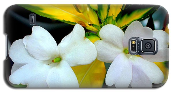 Sun Patiens Spreading White Variagated Galaxy S5 Case