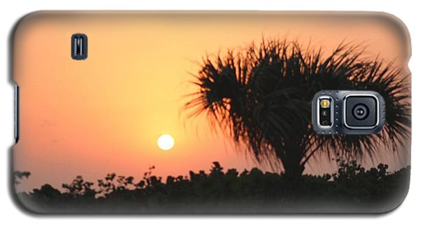 Sun Rise And Palm Tree Galaxy S5 Case by Nance Larson