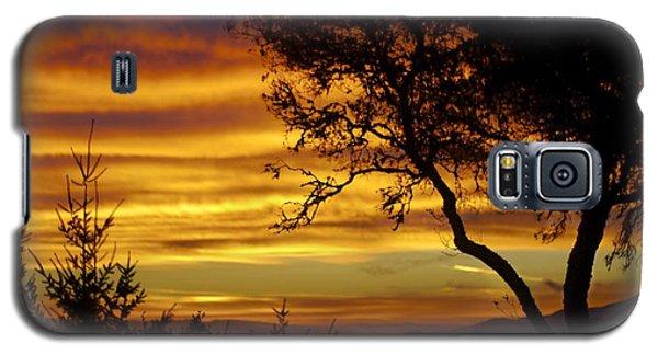 Sun Rising  Galaxy S5 Case by Alex King