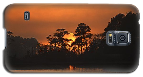 Galaxy S5 Case featuring the photograph Sun Setting In Trees by Bill Swartwout