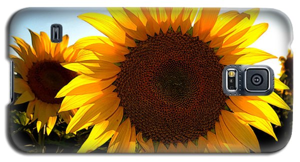 Galaxy S5 Case featuring the photograph Sun Shine 3 Wc 2  by Lyle Crump