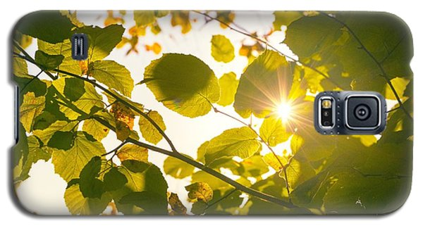 Galaxy S5 Case featuring the photograph Sun Shining Through Leaves by Chevy Fleet