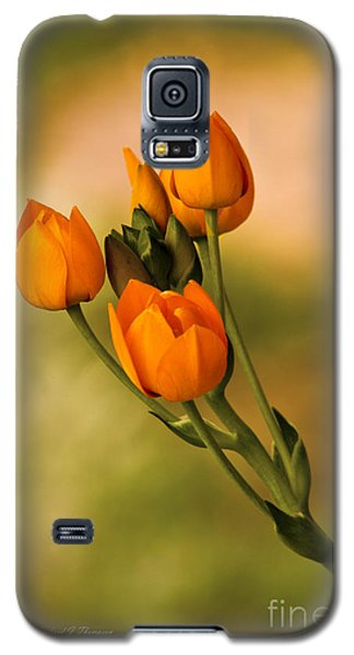 Sun Star Flower Galaxy S5 Case
