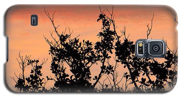 Sun Up Silhouette Galaxy S5 Case by Joy Hardee