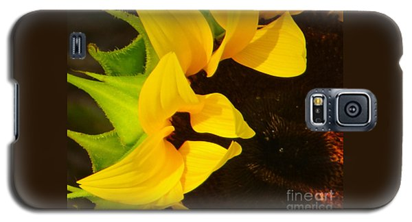 Sun Worshipper Galaxy S5 Case by Joy Hardee