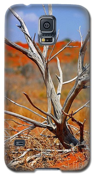 Sunbleached Galaxy S5 Case by Henry Kowalski