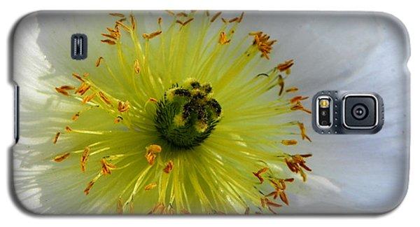 Galaxy S5 Case featuring the photograph Sunburst by Deb Halloran