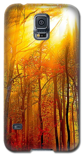Sunburst In The Forest Galaxy S5 Case