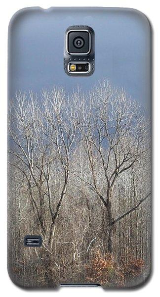 Sunday Gray Morning  Galaxy S5 Case