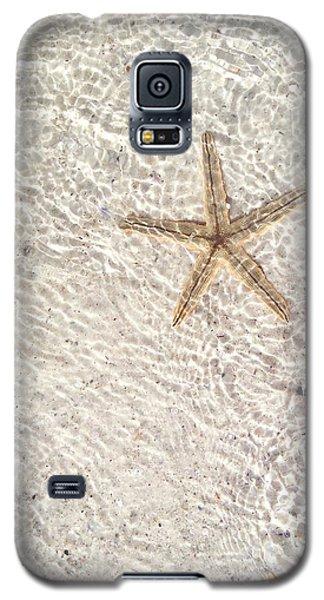 Galaxy S5 Case featuring the photograph Anna Maria Island Starfish by Jean Marie Maggi