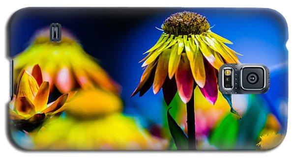 Sundaze Flame Strawflower Galaxy S5 Case