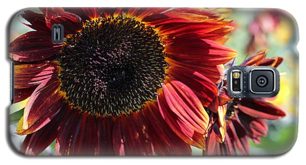 Sunflower 15 Galaxy S5 Case