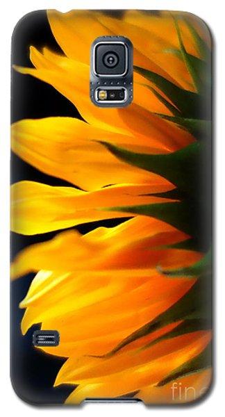 Sunflower 2 Galaxy S5 Case