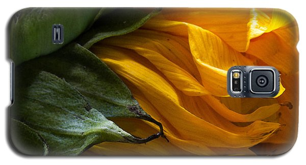 Sunflower 5 Galaxy S5 Case by Mary Bedy