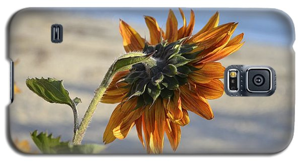 Galaxy S5 Case featuring the photograph Sunflower by Alex King