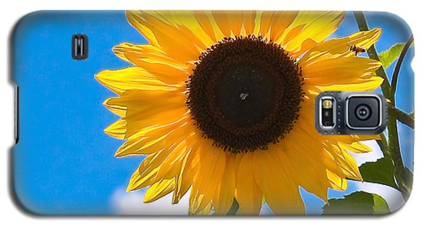 Sunflower And Bee At Work Galaxy S5 Case