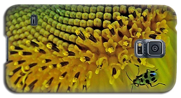 Sunflower And Beetle Galaxy S5 Case