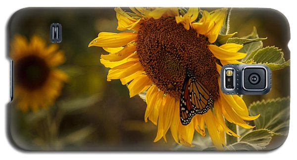 Sunflower And Butterfly Galaxy S5 Case