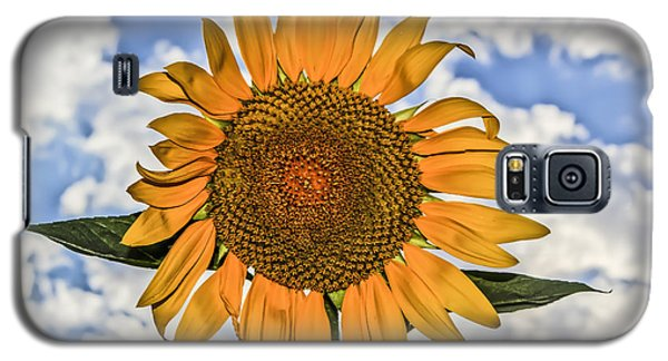 00008 Sunflower And Clouds Galaxy S5 Case