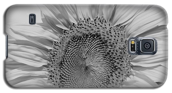 Sunflower Black And White Galaxy S5 Case